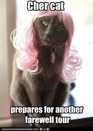 Cher cat prepares for another farewell tour