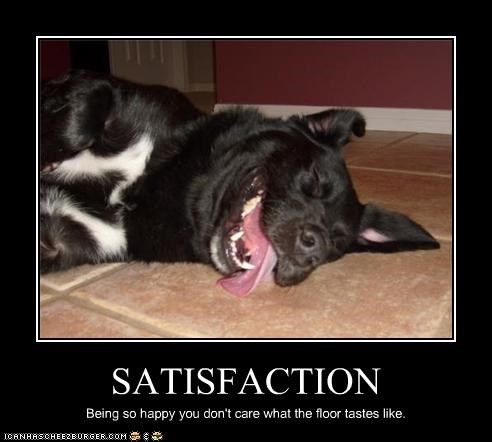 SATISFACTION Being so happy you don't care what the floor tastes like.