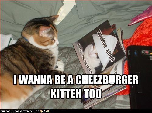 Cheezburger Image 2343513856