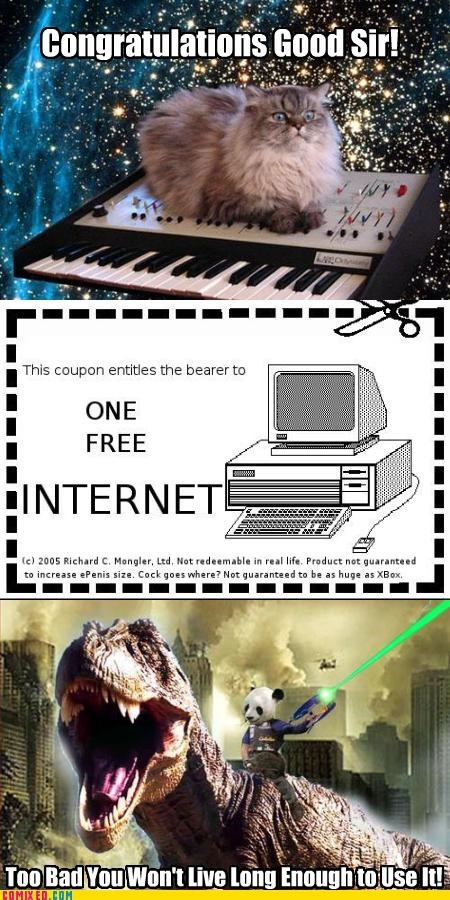 a winner is you coupon internetz pew pew pew - 2344107776