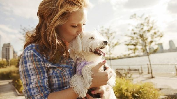 Researches show that owing a pet can improve your health - cover image of woman holding a dog in sunshine.