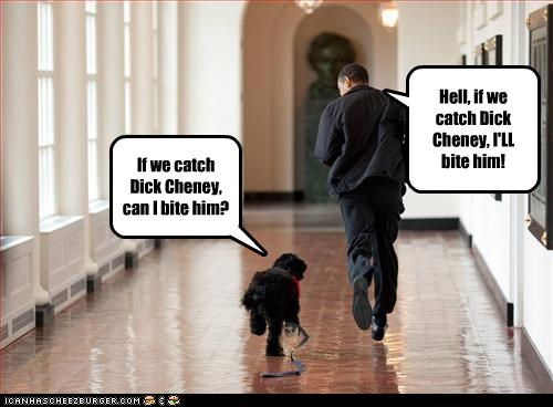 If we catch Dick Cheney, can I bite him? Hell, if we catch Dick Cheney, I'LL bite him!