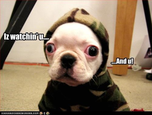 Iz watchin' u.... ....And u!