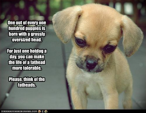 One out of every one hundred puppies is born with a grossly