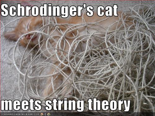Cat string teori dating dating Midlands Irland