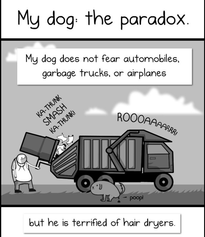 My Dog Is A Paradox: Cartoon about how a dog is not afraid of cars or trucks, but terrified of hair dryers.
