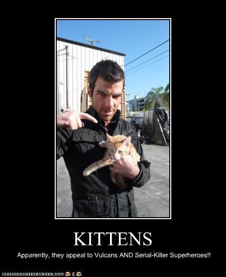 KITTENS Apparently, they appeal to Vulcans AND Serial-Killer Superheroes!!