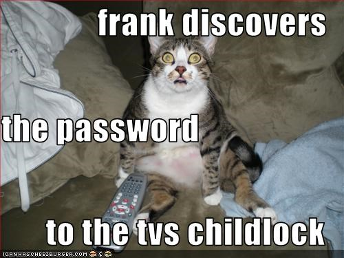 password scared TV - 2362833152