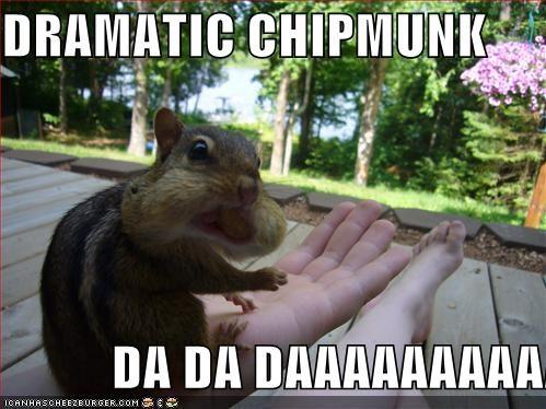 DRAMATIC CHIPMUNK DA DA DAAAAAAAAAAAAA - Cheezburger - Funny