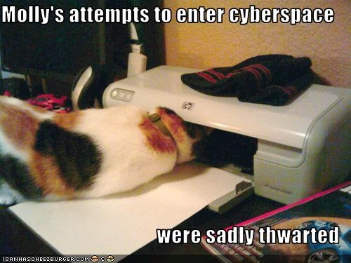 FAIL internet printer stupid - 2371936000