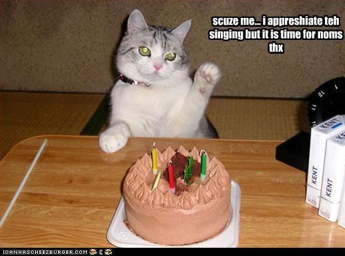 birthday cake fud want - 2374283520