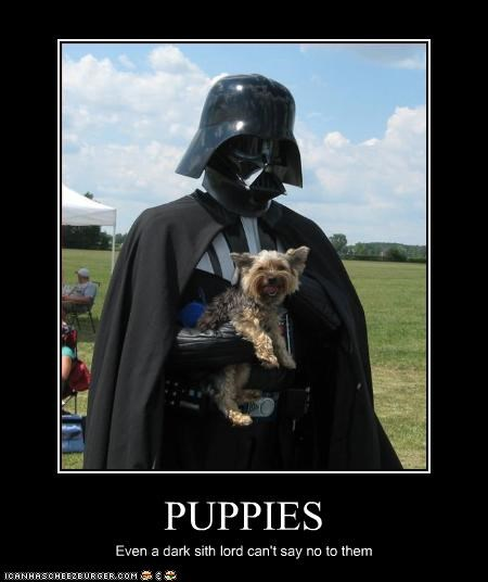 PUPPIES Even a dark sith lord can't say no to them