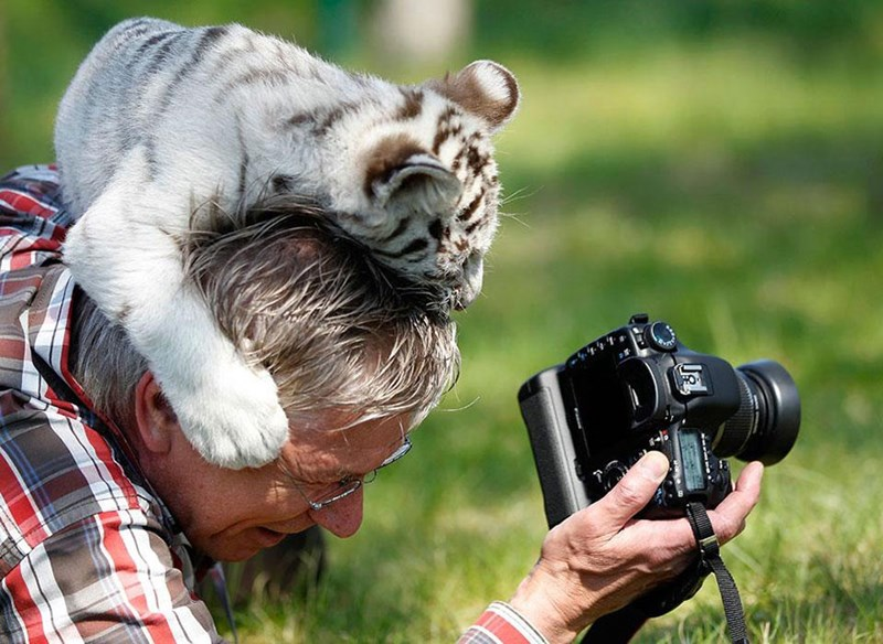 Behind the scenes of nature photographers work