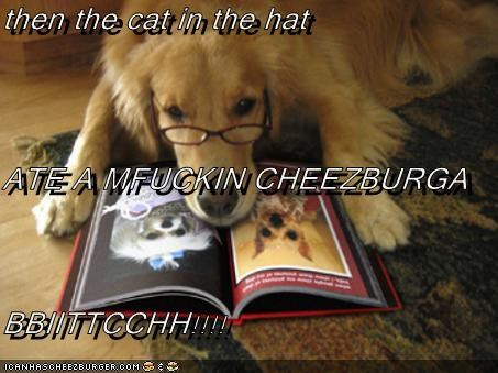 Cheezburger Image 2379162880