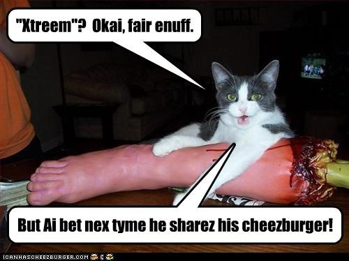 Cheezburger Image 2380369664