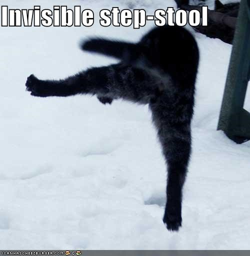 Excellent Invisible Step Stool Cheezburger Funny Memes Funny Beatyapartments Chair Design Images Beatyapartmentscom