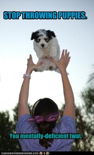 STOP THROWING PUPPIES. You mentally-deficient twat.
