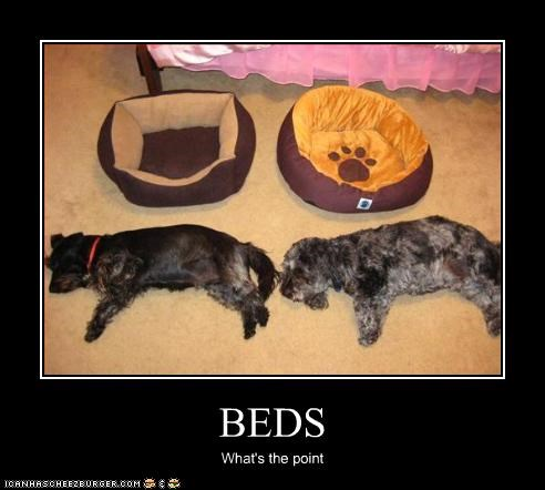 beds floor outside sleeping whatbreed