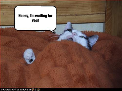 Honey I M Waiting For You Cheezburger Funny Memes Funny