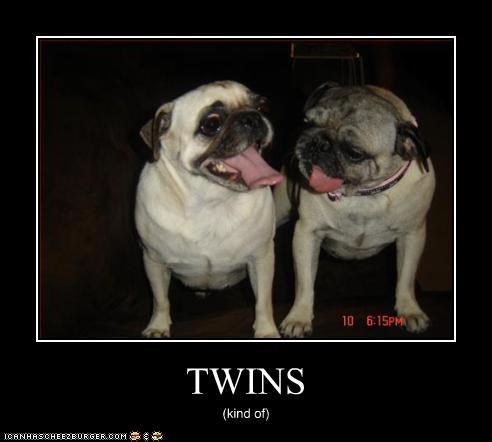 TWINS (kind of)