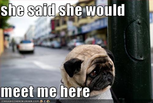 date girl pug Sad - 2396784896