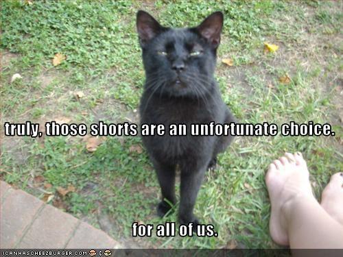 do not want gross mean shorts - 2397163264