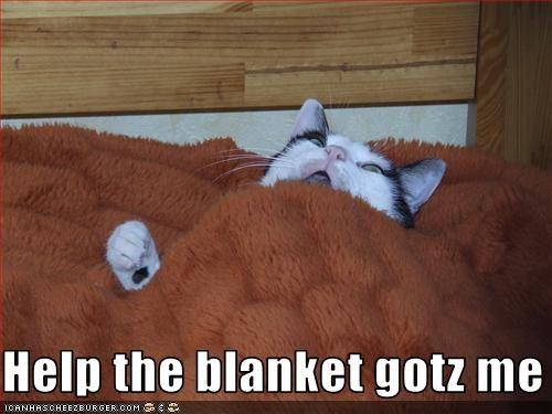 blanket halp oh noes - 2398463744