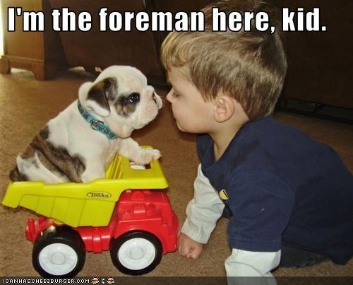 bulldog human kid puppy toys truck - 2400656640