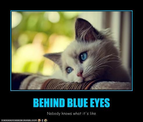 BEHIND BLUE EYES Nobody knows what it's like