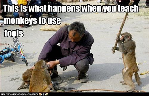This is what happens when you teach monkeys to use tools