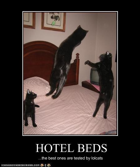 bed hotel jumping - 2409160448
