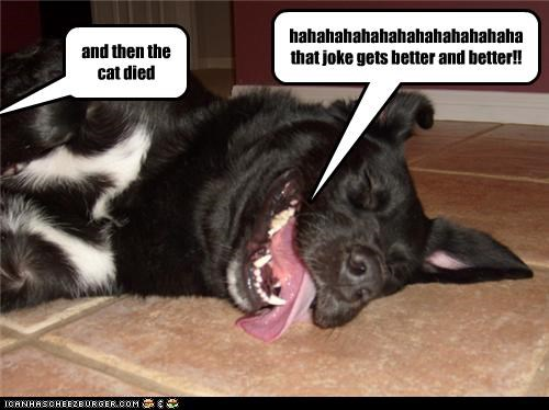 and then the cat died hahahahahahahahahahahahaha that joke gets better and better!!