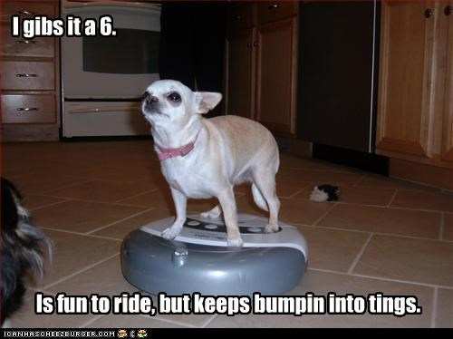 chihuahua,riding,vacuum