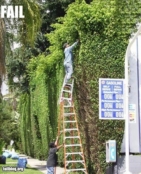 bad idea failboat g rated ladders safety trimming yard work - 2410411776