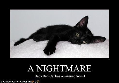 A NIGHTMARE Baby Ben-Cat has awakened from it