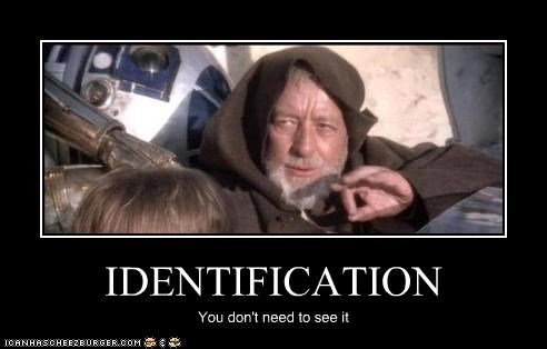IDENTIFICATION You don't need to see it