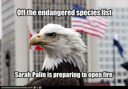 Off the endangered species list Sarah Palin is preparing to open fire