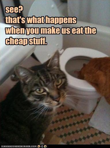 do not want fud puke toilet - 2414363392