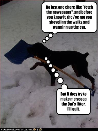 "Do just one chore like ""fetch the newspaper"", and before you know it, they've got you shoveling the walks and warming up the car. But if they try to make me scoop the Cat's litter, I'll quit."