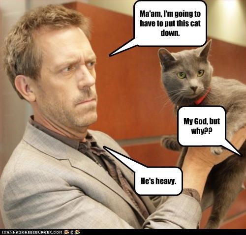 Cats House MD hugh laurie sexy Brits TV - 2415565056