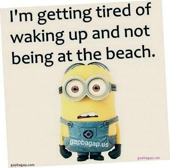 A picture of a minion being annoyed they aren't at the beach every morning but at work