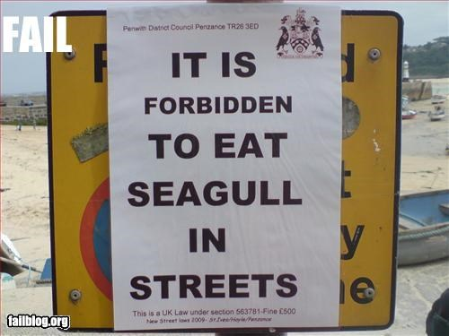eating,forbidden,g rated,seagull,signs,streets,UK,warning,wtf