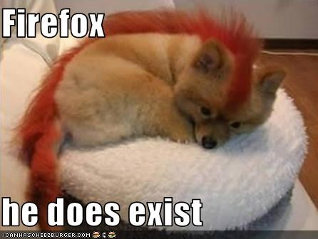 computer fire internet lolfoxes pomeranian puppy - 2418222848