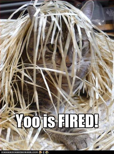 Curses! Trumped again! Yoo is FIRED!
