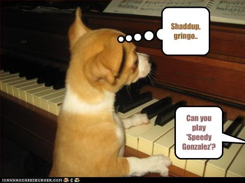 Can you play 'Speedy Gonzalez'? Shaddup, gringo..