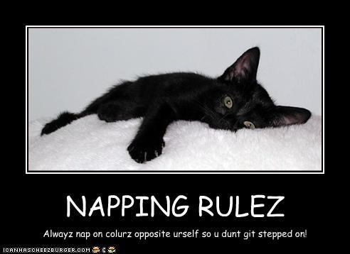 NAPPING RULEZ Alwayz nap on colurz opposite urself so u dunt git stepped on!