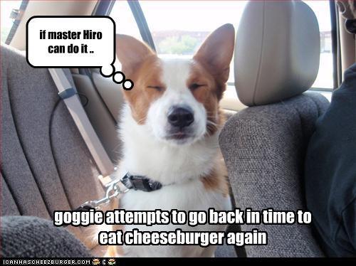 Cheezburger Image 2426552064
