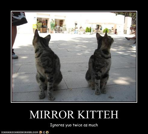 ignoring,look a like,mirror