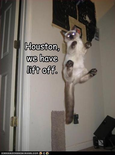 flying houston space - 2426871552