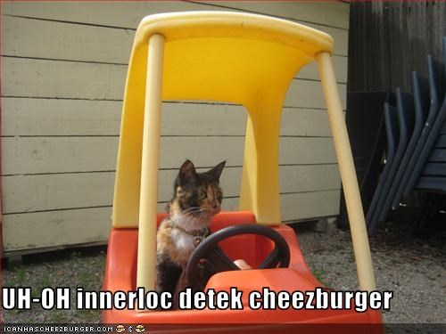 Cheezburger Image 2427537152